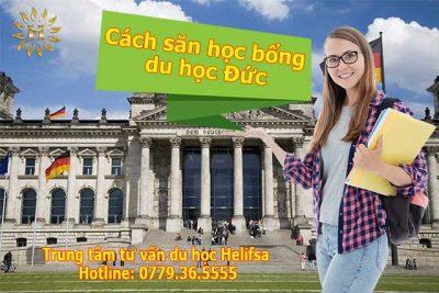 Cách săn học bổng du học Đức