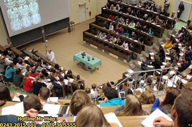 Chương trình đào tạo bằng tiếng Anh không áp dụng với tất cả các ngành học tại Đức