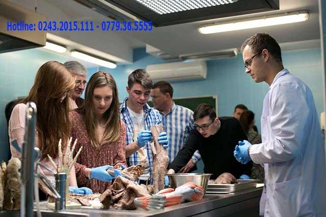 Các giai đoạn học tập y khoa tại Ba Lan