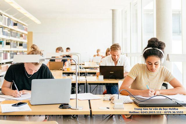 Cơ hội việc làm cho sinh viên tốt nghiệp ngành Quan hệ quốc tế khá rộng
