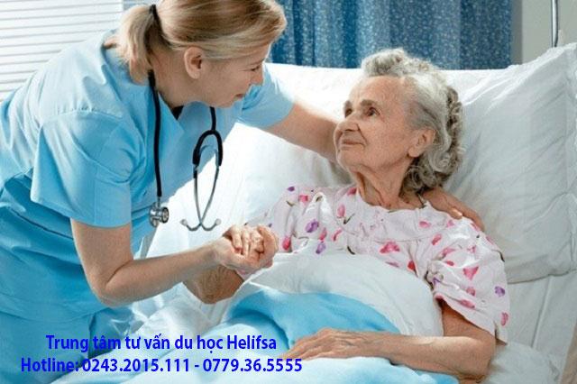 Ngành điều dưỡng đang được chính phủ Ba Lan kêu gọi và đưa ra các chính sách hấp dẫn