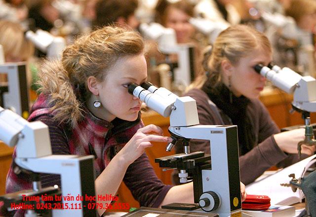 Muốn du học ngành Y ở Đức cần đáp ứng được một số yêu cầu cụ thể