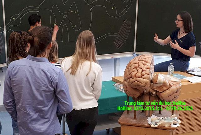 Nước Đức có ngành Y học phát triển mạnh mẽ