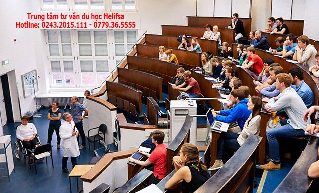 Chương trình đào tạo ngành Y tại Đức diễn ra hơn 6 năm